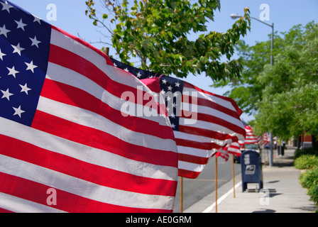 """Flags""Stars And Stripes""entlang""Main Street"",""Memorial Day"", Sebastopol, Sonoma County, California"" - Stockfoto"
