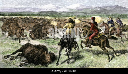Frauen suchen männer büffel