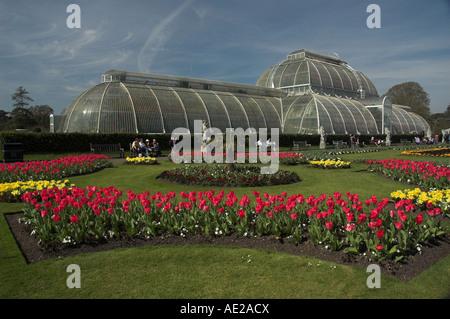 Betten der rote und gelbe Zwiebeln blühen im Frühjahr vor dem Palmenhaus im Royal Botanic Gardens, Kew, London. - Stockfoto