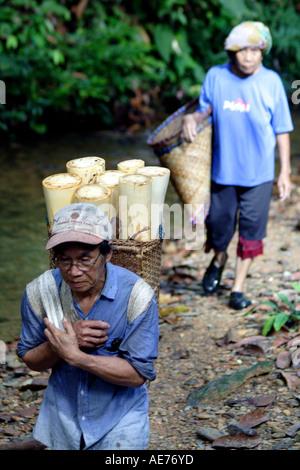Ältere Iban-Mann und Frau Nahrung aus dem Dschungel-Wald in der Nähe von ihrem Langhaus, Kapit, Sarawak, Borneo, - Stockfoto