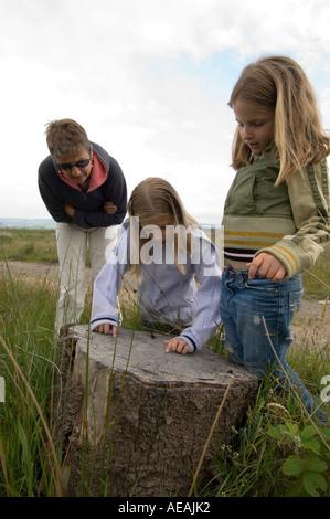 Mutter und zwei 2 Töchter zählen Jahrringe auf Trichrug Eisenzeit Hügel Fort Talsarn Ceredigion - Stockfoto