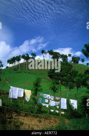 Kleidung auf der Wäscheleine Dominikanische Republik Inselgruppe der großen Antillen Karibik