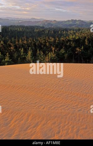 Umpqua Dünen in Oregon Dunes National Monument Oregon USA - Stockfoto