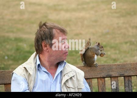 Mann im St James Park in London - Stockfoto