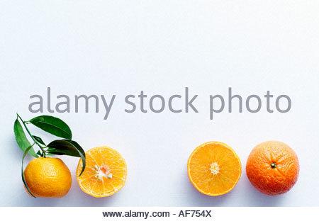 h lften obst obst mandarine clementine halbe zitrusfr chte gesch lt sch len gesch lt. Black Bedroom Furniture Sets. Home Design Ideas