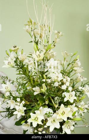 Blumen-Arrangement der weiße Taglilie oder Taglilie Sorpressa ...