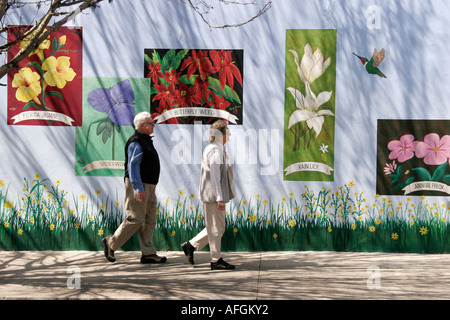 Florida, FL, Süd, Putnam County, Palatka, Wandbilder, wilde Blume, Blume, Senioren alten Bürger Rentner Rentner - Stockfoto
