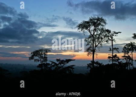Morgendämmerung über afrikanischen Regenwald mit Nebel clearing, Ghana, Westafrika - Stockfoto