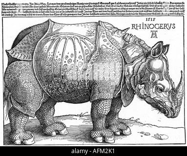 Zoologie, Tiere, indische Nashorn (Rhinoceros unicornis), Holzschnitt von Albrecht Dürer 1515, Artist's Urheberrecht - Stockfoto