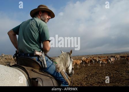 Ein israelischer Vieh herder trägt eine Pistole auf einem Pferd auf den Golanhöhen im Norden Israels montiert - Stockfoto