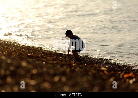 Silhouette der junge Mädchen bei Sonnenuntergang am Strand auf der Isle Of Wight bücken abholen Steinen von der - Stockfoto