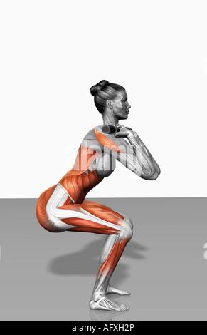 Vordere Kniebeuge-Übung (Teil 1 von 2) - Stockfoto