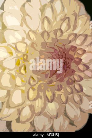 Dhalia Foto illustration - Stockfoto