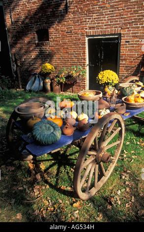Niederlande Warffum Kürbisse auf alten Pferdewagen - Stockfoto