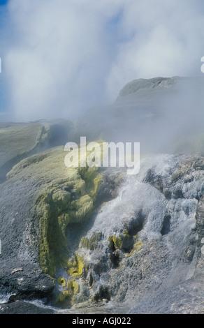 Pohutu Geysir und gelb dampfenden Schwefel Klippen in Whakarewarewa Rotorua Nordinsel Neuseeland - Stockfoto