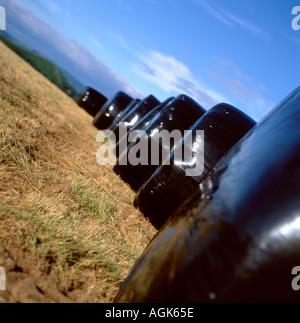 Ein Feld von Großballen Silage Taschen in Carmarthenshire Wales UK - Stockfoto