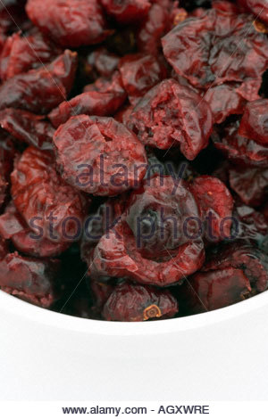 getrocknete cranberries vaccinium macrocarpon stockfoto bild 17326125 alamy. Black Bedroom Furniture Sets. Home Design Ideas