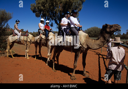 Kamel Zug und Reiter, Kata Tjuta National Park, Northern Territory, Australien - Stockfoto