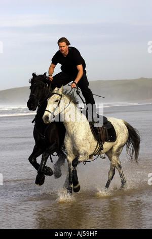 Reiter reitet zwei Pferde Throught das Meer - Stockfoto