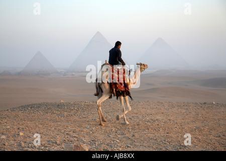 Führer zu Fuß auf einem Kamel in der Steinwüste im nebligen dunstigen Sonnenlicht am frühen Morgen mit Pyramiden - Stockfoto