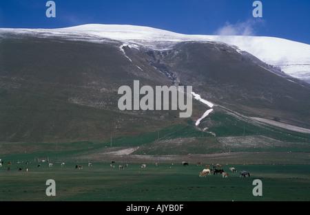 Hochebene Piano Grande bei Castelluccio Sibellinian Mtns frischen Schnee im Frühjahr Umbrien Italien - Stockfoto