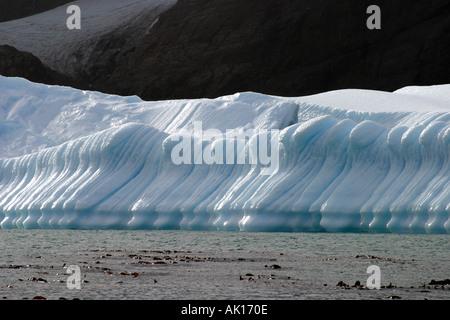 Eiswand skulpturierten Eis wie eine Reihe von Soldaten in der Antarktis. - Stockfoto