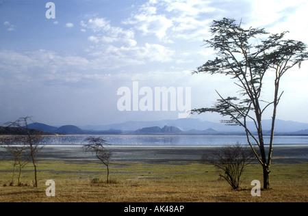 Lake Baringo in der großen afrikanischen Grabenbruch Kenia in Ostafrika - Stockfoto