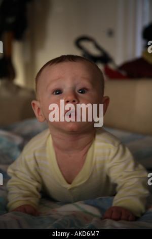 Baby Boy Herr - Stockfoto