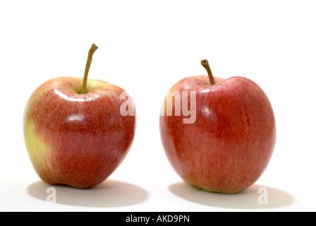Zwei Äpfel 'Royal Gala' - Stockfoto