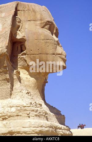 Die große Sphinx von Gizeh, Kairo, Ägypten - Stockfoto