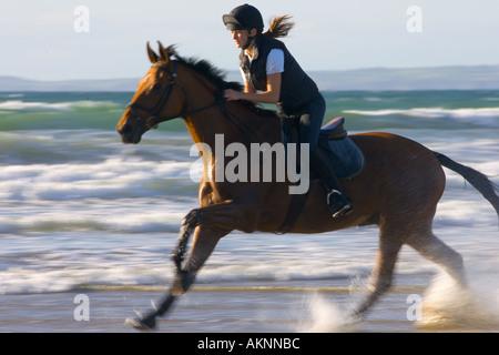 Junge Frau fährt ein Cleveland Bay Kreuz Thoroughbred Pferd auf breiten Haven Beach Wales - Stockfoto
