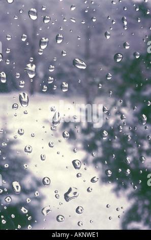 Gefrorene Wassertropfen auf Winter Fenster mit immergrünen Bäumen - Stockfoto