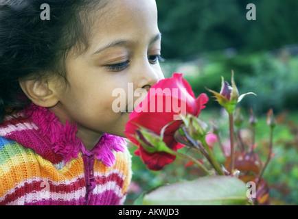 kleine Mädchen riechende rote Blume - Stockfoto