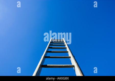 Leiter in den Himmel - Stockfoto