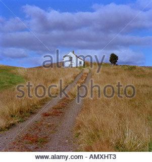 Eine einsame Hütte und einen einzigen Baum und Tracks führen durch ein Feld - Stockfoto