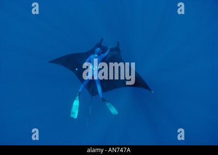 Freediver fängt eine freie Fahrt auf riesigen Mantarochen - Stockfoto