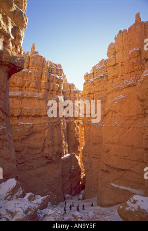 Wanderer auf der Navajo Loop Trail, Wall Street, Winter, Bryce Canyon National Park, Utah, USA - Stockfoto