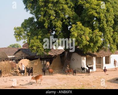 Ziegen Kühe zwei Männer und jungen außerhalb der typischen ländlichen Dorfhaus mit weißen Wänden und Dung pat Dach - Stockfoto