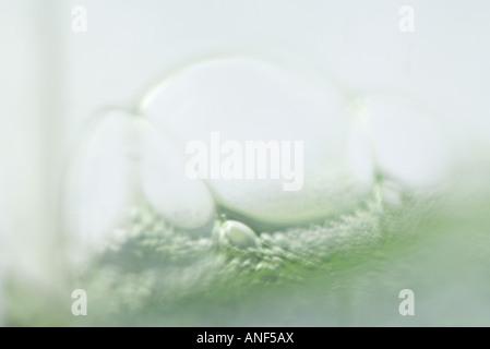Luftblasen im grünen Stoff, extreme Nahaufnahme - Stockfoto