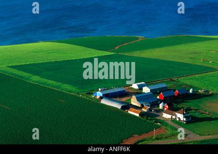 Luftbild der Farm, Park Corner, Prinz Edward, Kanada. - Stockfoto