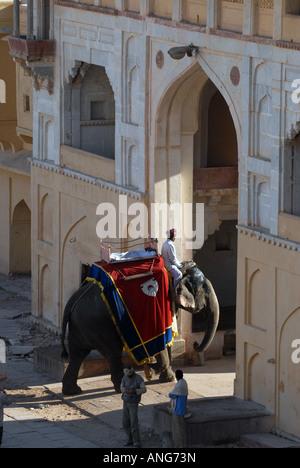 Elefant am Suraj Pol Tor, Amber Fort, Jaipur, Indien. - Stockfoto