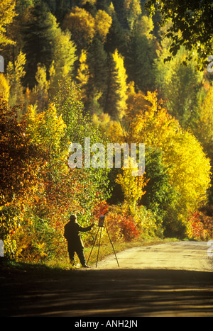 Künstler malen in goldenes Licht, Nelson, British Columbia, Kanada. - Stockfoto
