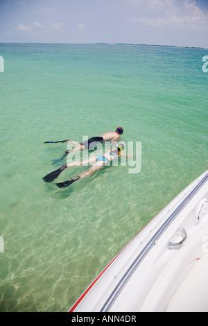 Leute Schnorcheln in Wasser, Florida, Vereinigte Staaten - Stockfoto