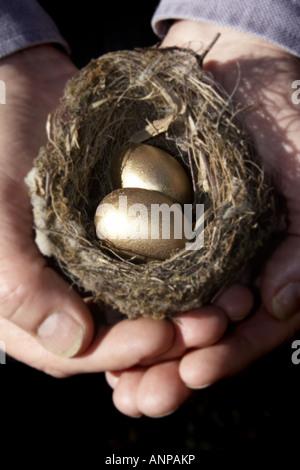 Einsparungen zwei hohlen Hand halten eine kleine Vögel nisten mit zwei goldenen Eiern vertreten Ihren Notgroschen - Stockfoto