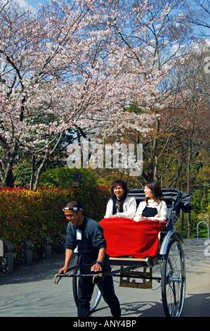 Japan, Insel Honshu, Kyoto Präfektur, Stadt Kyoto. Eine Rikscha-Fahrer, die Touristen Kirschblüte im Maruyama Park - Stockfoto