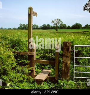 Cheshire Alderley Edge Weg durch Gerstenfeld - Stockfoto