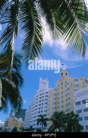 Hotel Delano, Collins Avenue, South Beach, Miami, Florida, USA - Stockfoto