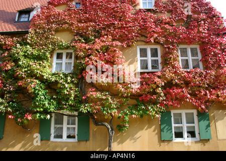überwuchert urige Haus an die Fuggerei älteste Sozialsiedlung der Welt Augsburg Bayern Deutschland - Stockfoto