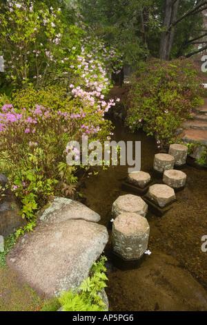 Asticou Azalea Gärten in Northeast Harbor im Bundesstaat Maine. In der Nähe von Acadia-Nationalpark auf Mount Desert - Stockfoto