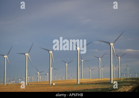 Stromerzeugung Windmühlen am Stateline Wind-Projekt. Walla Walla County, WA. USA - Stockfoto